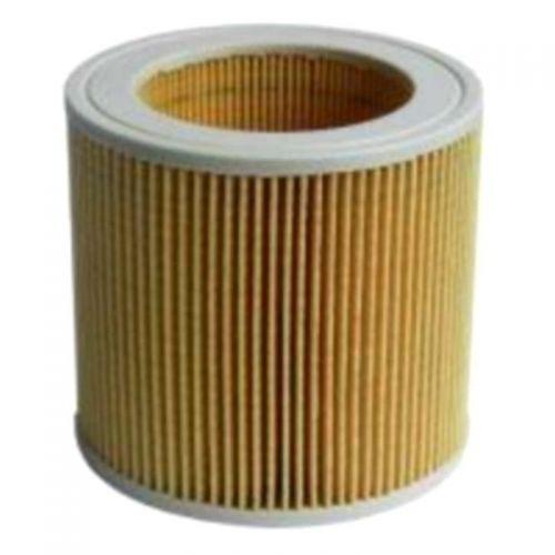 Cartouche filtre origine Aspirateur Karcher (64145520)
