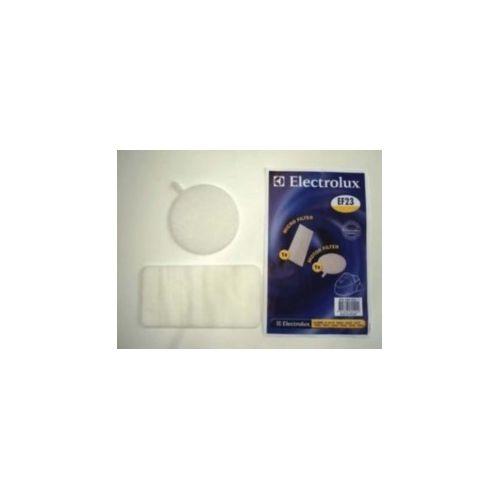 Filtres (x2) Clario Aspirateur Electrolux Menalux...